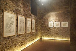"""Ausstellung """"Blüten und Räume"""" von Petra Moiser, Romanischer Keller Salzburg 2014"""